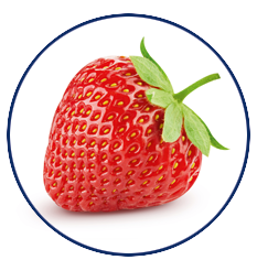 Xylitol Chwing Gum Erdbeere